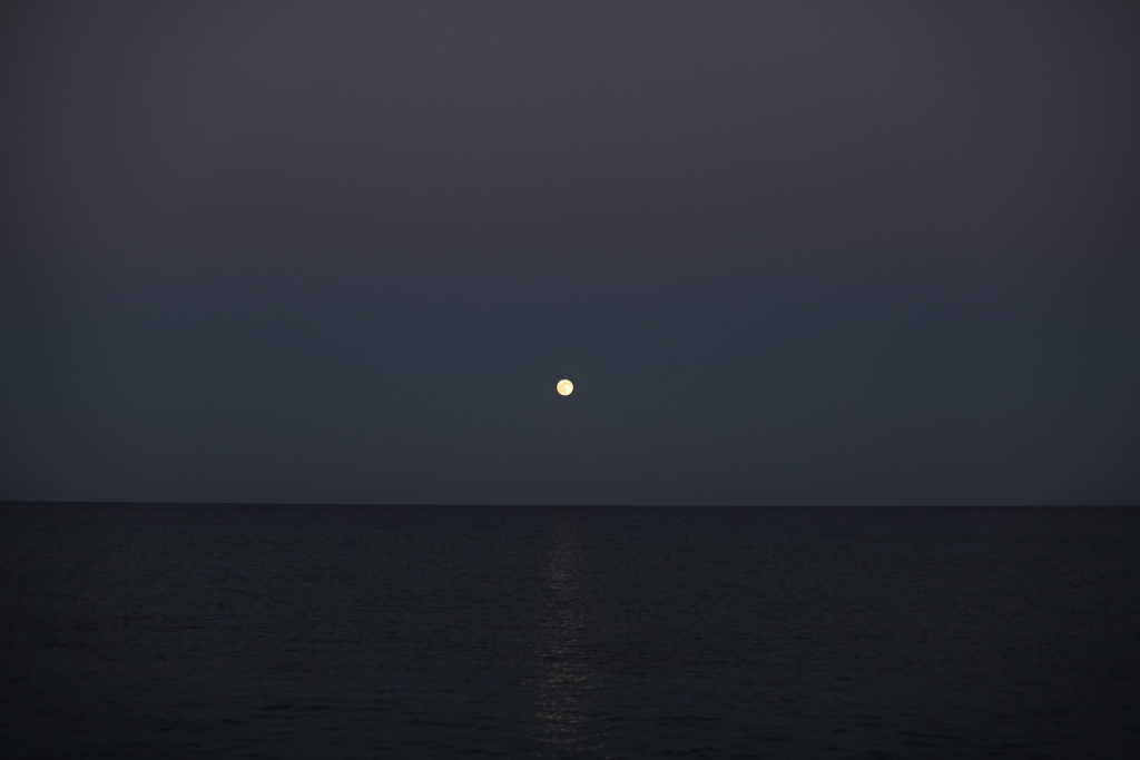 electric-moon